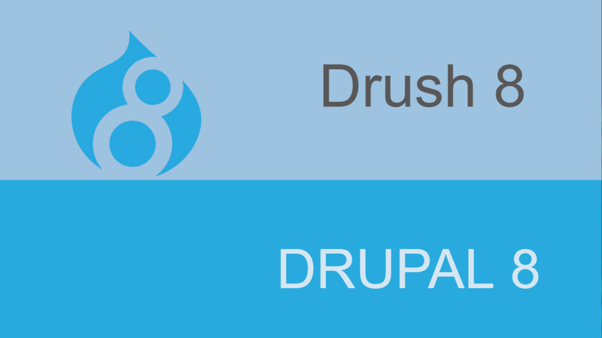 Drupal8 Development platform ready with Drush8!