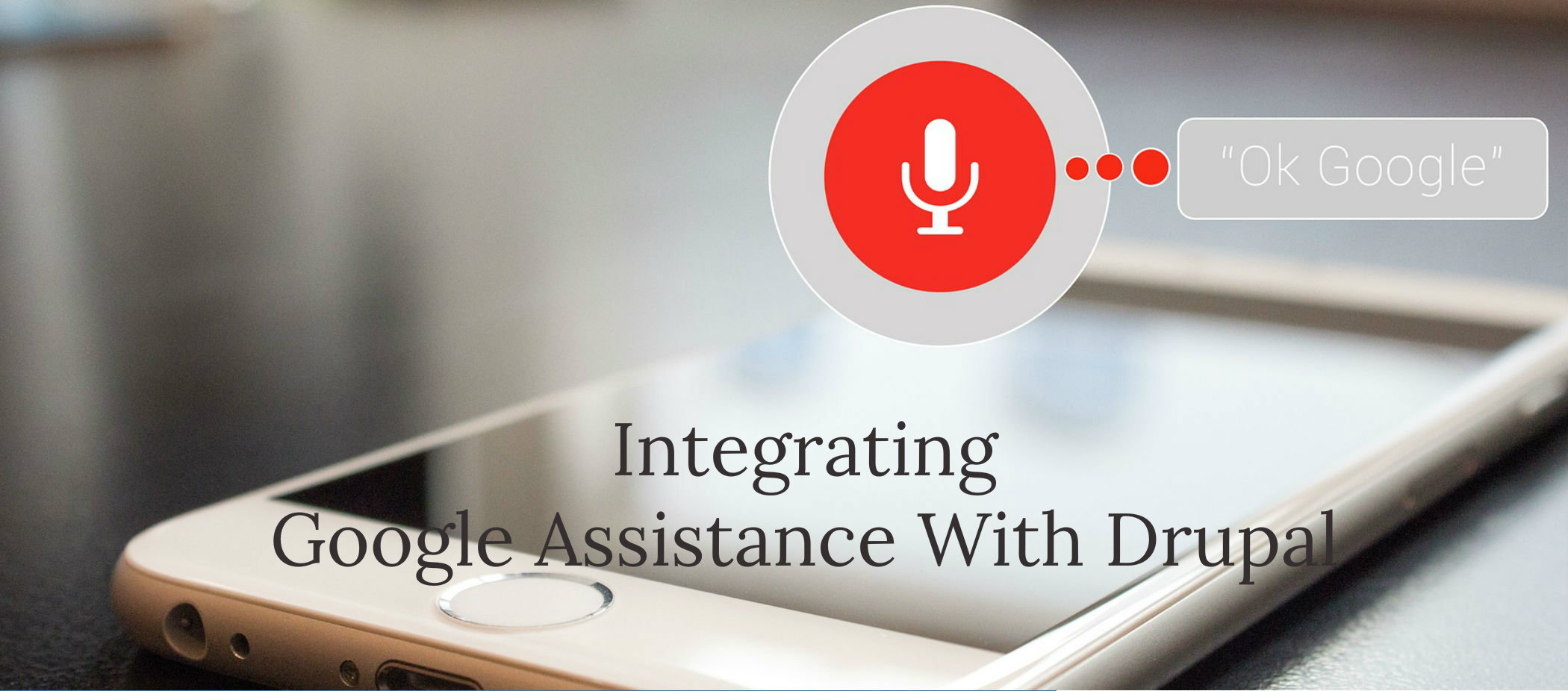 integrate Google Assistant